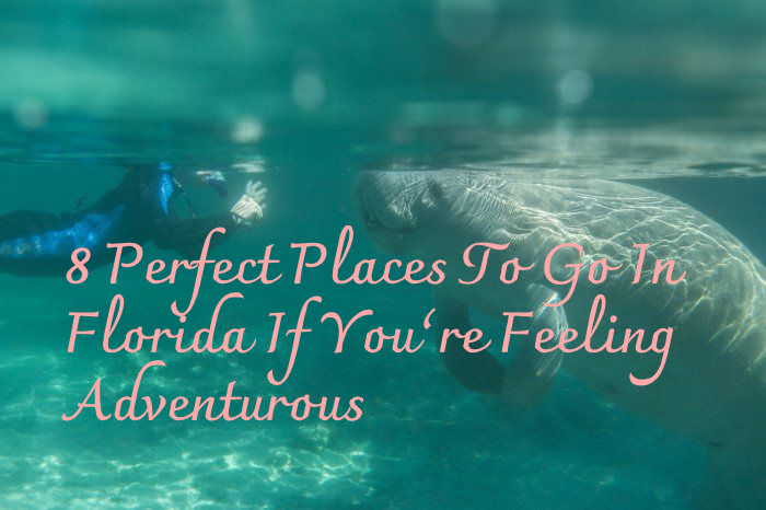 8 Perfect Places To Go In Florida If You're Feeling Adventurous